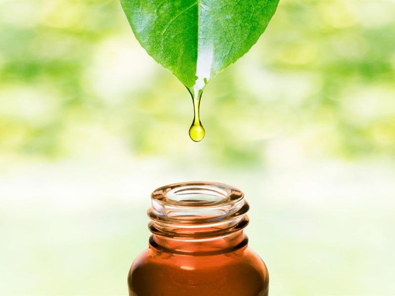 Oli essenziali: preziose formulazioni con molteplici usi