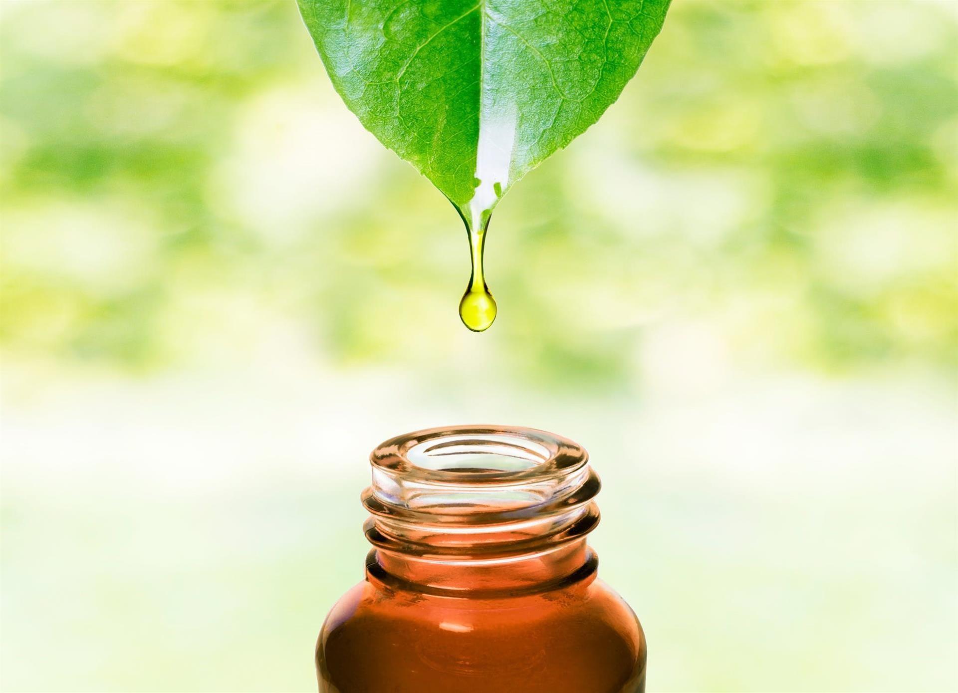 Aceites esenciales: formulaciones preciosas con múltiples usos