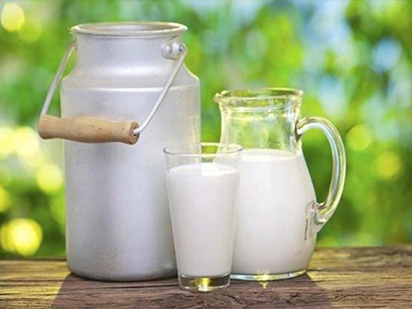 il latte d'asina nei prodotti cosmetici
